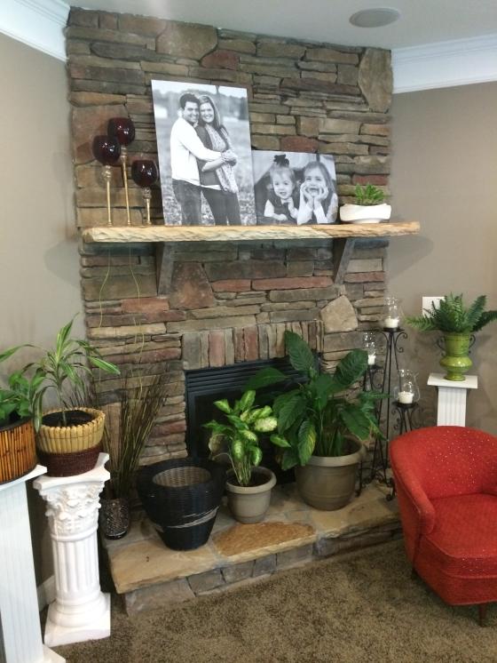 Starr haigler fireplace