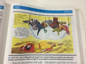 childrens illustrated bible acts 10